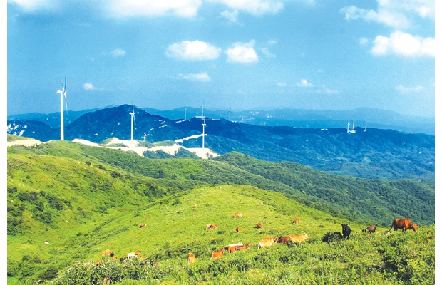 一座座白色的风力发电机在风中缓缓转动,一排排蓝色光伏电板在阳光下熠熠生辉,一条条银线飞架南北,成为鄂北一道道独特的风景。近年来,随着一个个风光电项目开工建设,以风光兴产业,以产业促发展,追风逐日的新时代画卷在殷店大地徐徐展开。殷店正全力打造新型能源产业示范镇,目前,全镇已形成由华润风电、华电光伏、鸿锦新能源燃气三大能源支柱产业。三大能源支柱产业全部项目建成后,投资将达到60亿元以上,年产值将达到10亿元以上,年创税收将达到1亿元以上。 A 借风聚力奏响风力发电进行曲 步入充满希望和未来的2016年,殷店