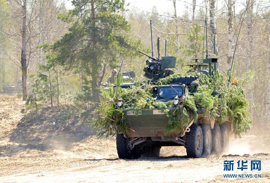 """""""夏季盾牌XIII""""多国军事演习在拉脱维亚举行"""